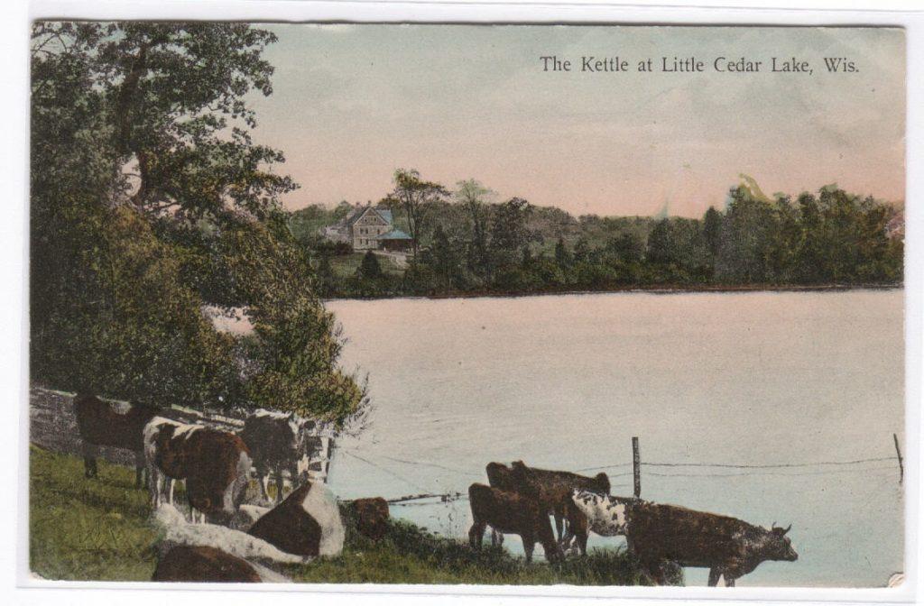 Wolf Farm's milkherd-In front-1910-North side of Kettle